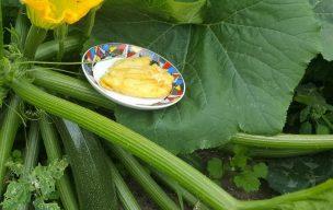 Mozzarella w kwiatach cukinii po włosku